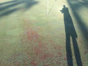 golfchat_authors_pete_flanigan_bare_greens
